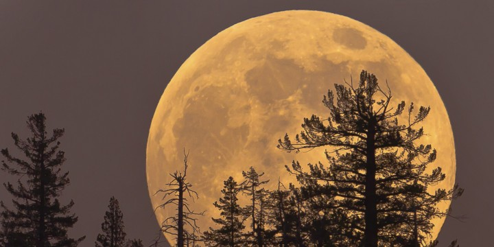 o-supermoon-facebook